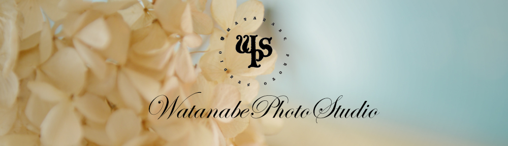 ワタナベフォトスタジオの日常ブログ  家族写真専門店